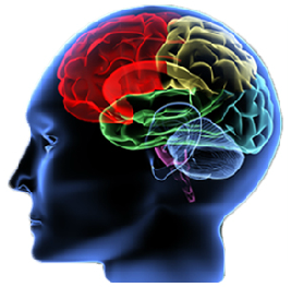 TBI survivors face longterm risks