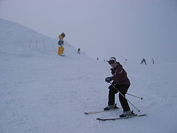 256px-Skiier_at_Coronet_Peak