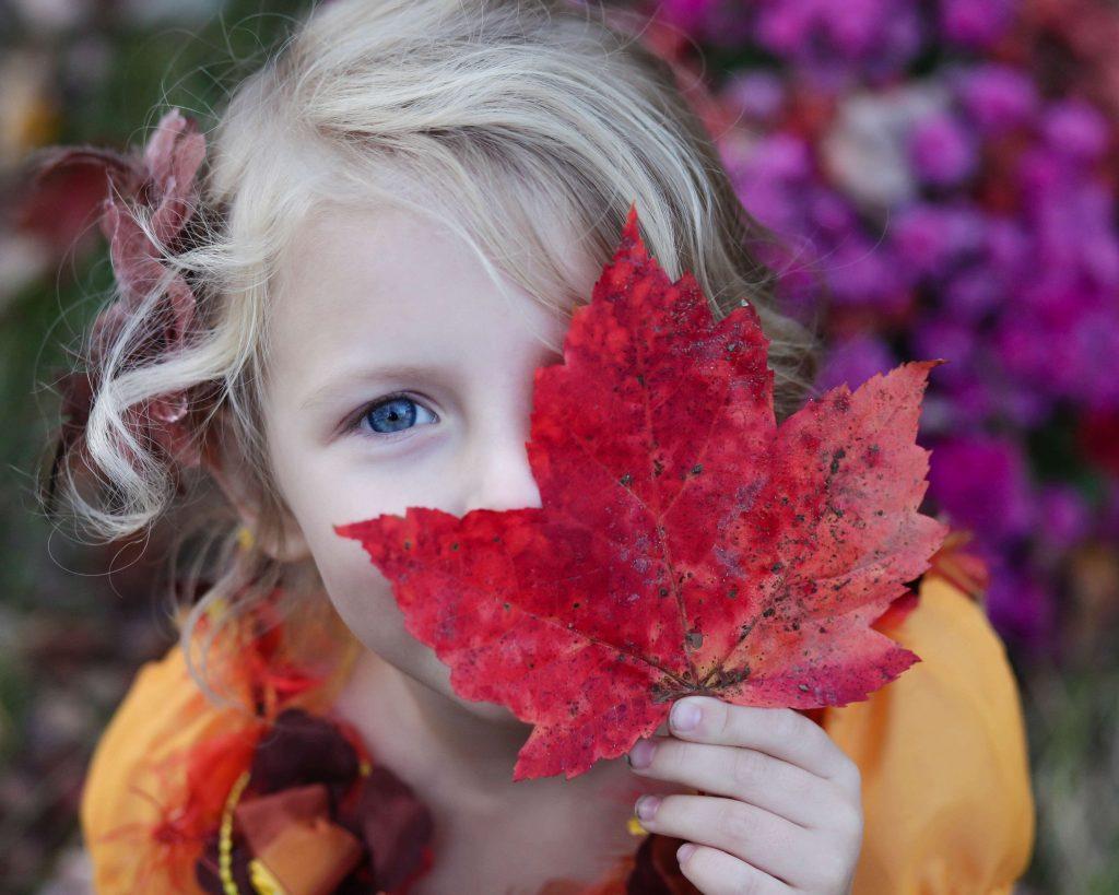 Car Crashes and Children - Eye Damage