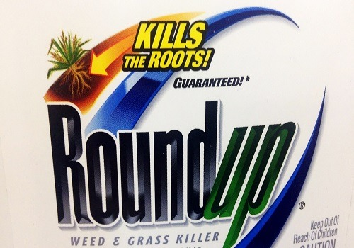 Roundup™ Targets Good Gut Bacteria