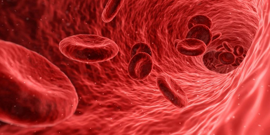 Blood Flow Changes After a Traumatic Brain Injury