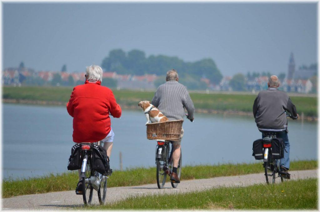 Loss of Mobility and Impacts on Quality of Life in Seniors