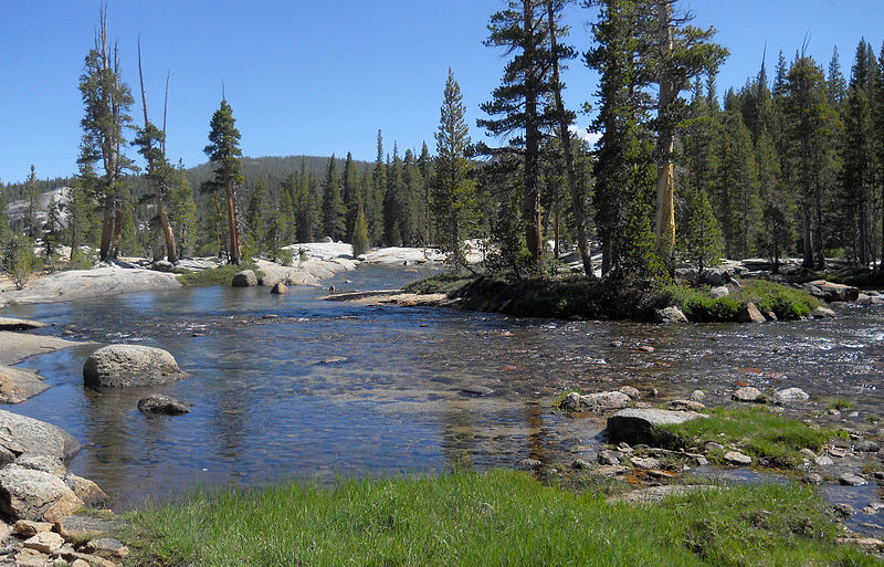 Tuolumne River Rescue