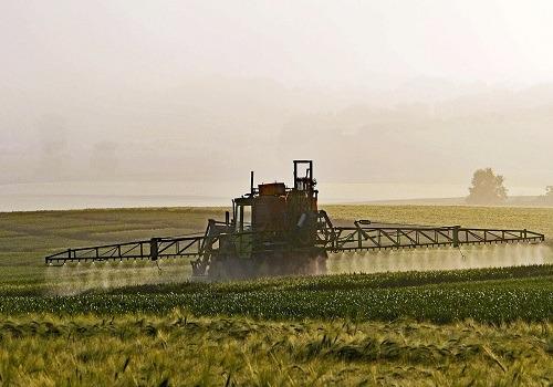 Next Monsanto Trial Begins in August