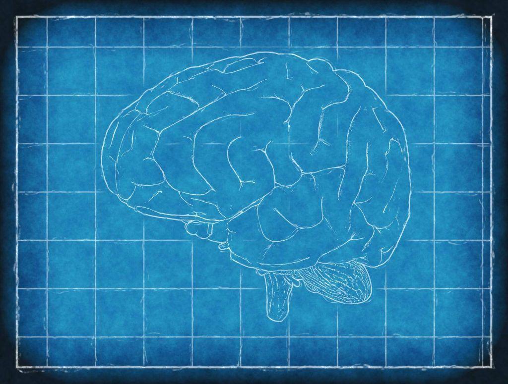 South Lake Tahoe Brain Injury Lawyer