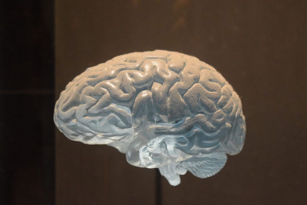 Berkeley Brain Injury Lawyer