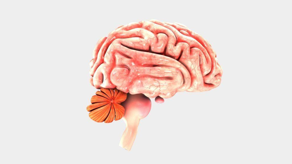 Changes in Personality Following a Traumatic Brain Injury