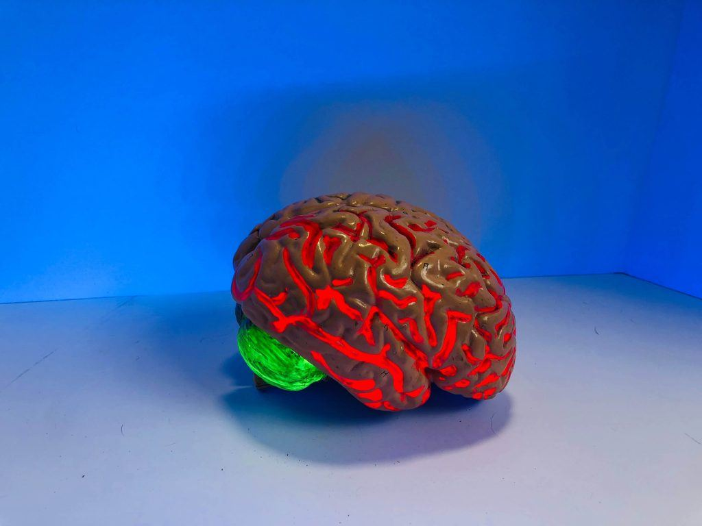 Fair Oaks Brain Injury Lawyer