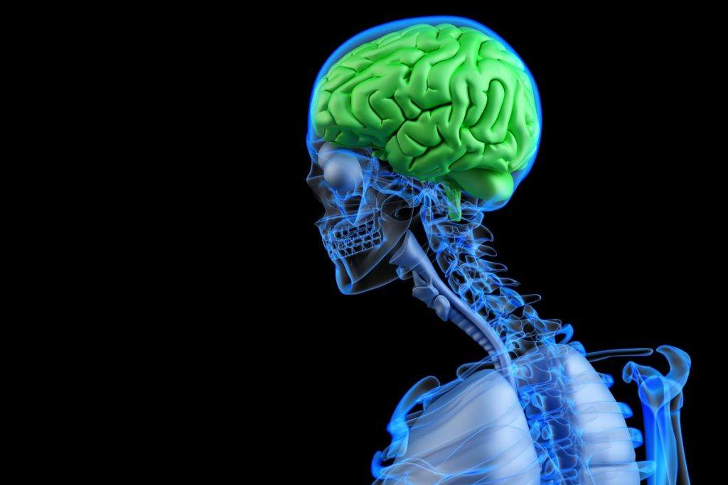 Brain Injury Symptoms After a Car Accident