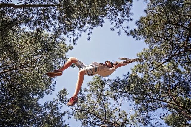 west sacramento aerial adventure