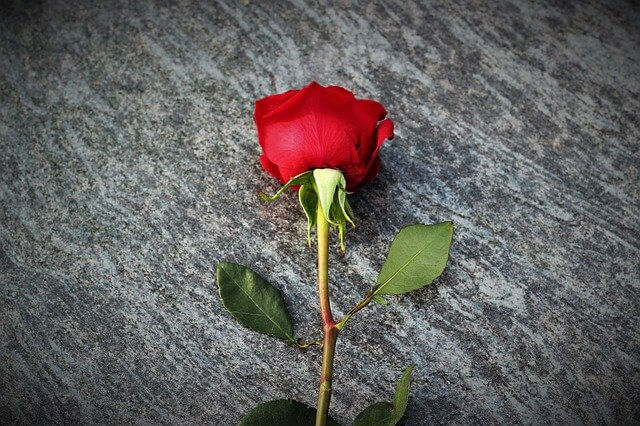 flower for Lakeville crash